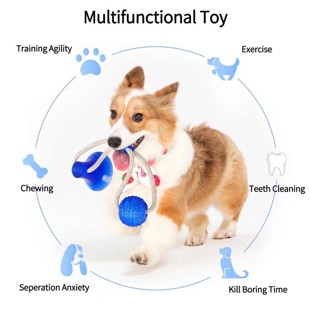 Multifunctional Dog Toy