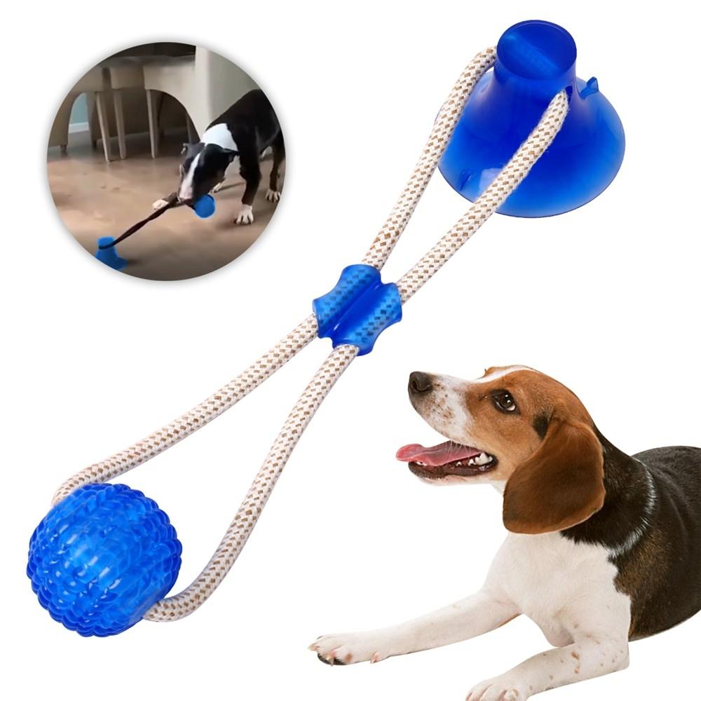 Dog Chew Toy For Teeth