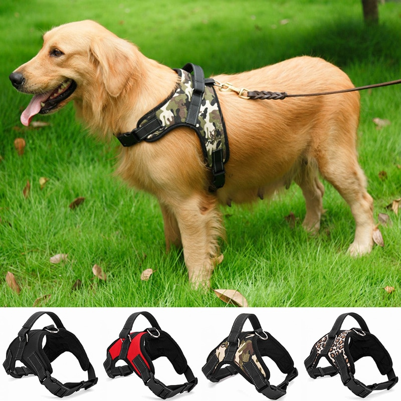 Dog Nylon Harness