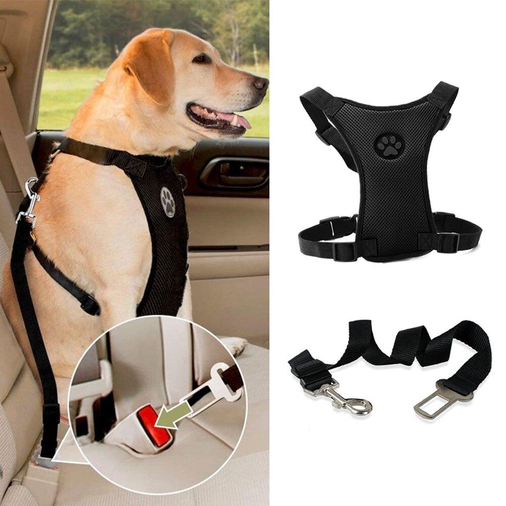 Seat Belt Dog Harness
